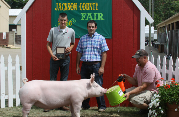 Div_3_Res_Champ_Gilt_580wx380h